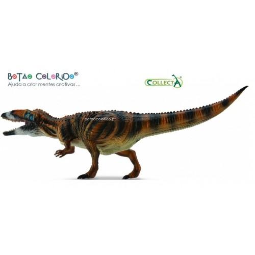 Carcharodontosaurus - escala 1:40